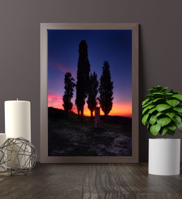 Sunset above Cypresses